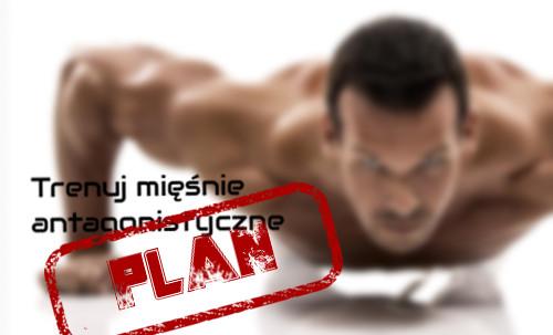 Trening mięśni antagonistycznych. Plan bez luk. Cz. 1