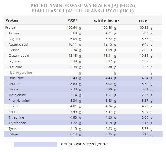 Przykładowy aminogram