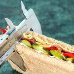 Zapotrzebowanie kaloryczne – największa bzdura dietetyki sportowej